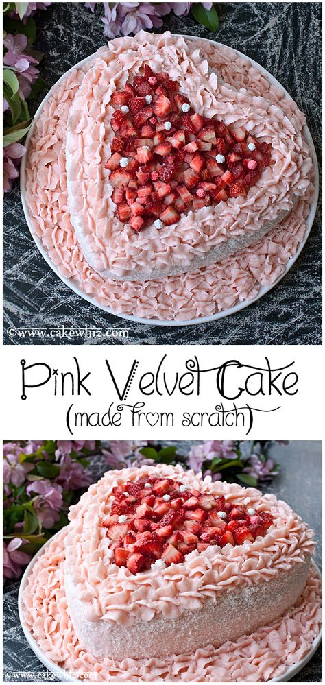 PINK VELVET CAKE made from scratch. Filled and covered in silky smooth strawberry frosting and fresh strawberries. This cake tastes just as good as it looks! From cakewhiz.com