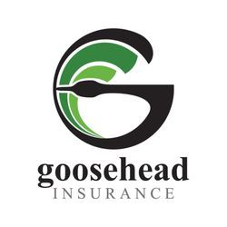 News Headlines About Goosehead Insurance Nasdaq Gshd Have