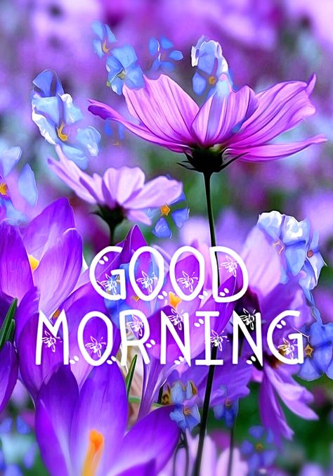 Good Morning Sweetie Pie! Praying you have a really lovely day today. God bless you. My Love and hugs. XOXO's