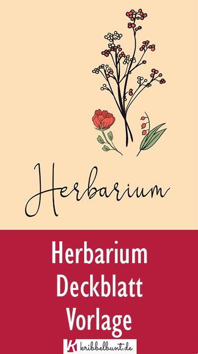 Herbarium Deckblatt Zum Ausdrucken In 2020 Deckblatt Vorlage Deckblatt Herbarium Vorlage