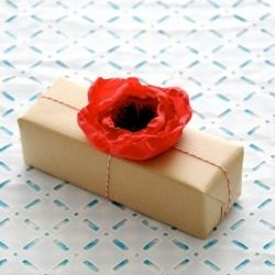 How cute is this poppy DIY. We found this from Creature Comforts originally!