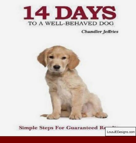 How To Train A Dog Not To Jump Cesar Millan And Pics Of Labrador