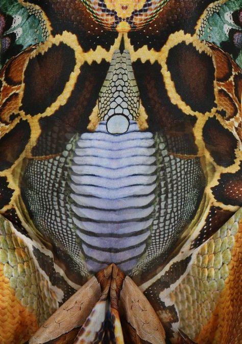 An Alexander McQueen 'Plato's Atlantis' collection snakeskin printed organza dress, Spring-Summer 2010