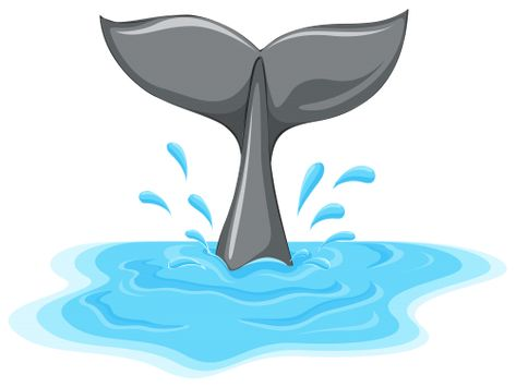 Whale Tail Png Clipart The Best Png Clipart Whale Tail Whale Dolphin Clipart