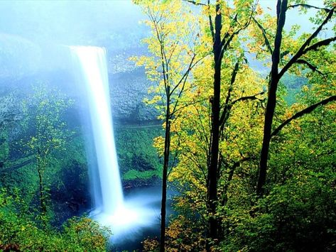 Amazing Nature Wallpapers