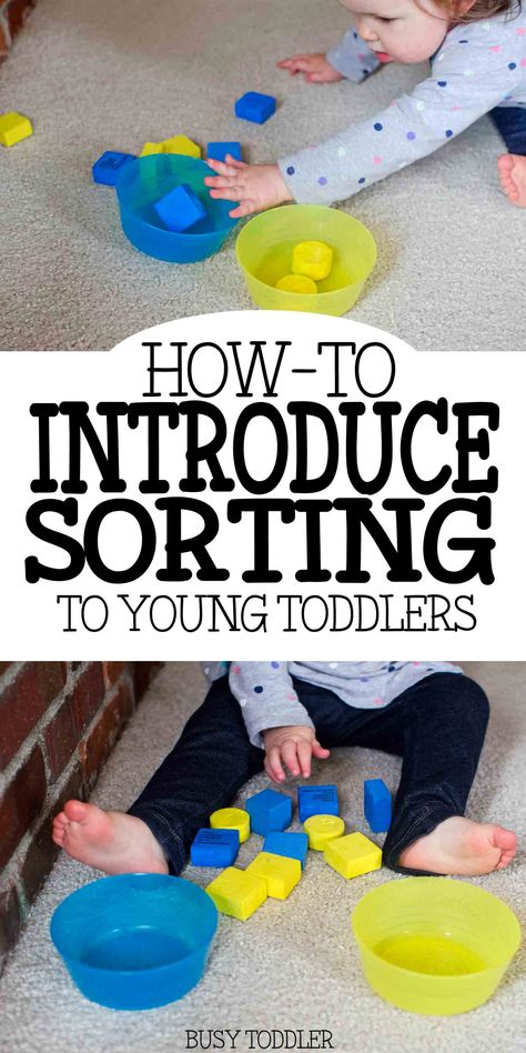 Introducing Sorting: Teaching Young Toddlers - a first lesson in sorting with a 16 month old! Learn tips and tricks for introducing sorting to toddler. Toddler Learning Activities, Infant Activities, Educational Activities, Preschool Activities, 18 Month Old Activities, Educational Games For Toddlers, Motor Activities, Activities With Toddlers, Color Sorting For Toddlers