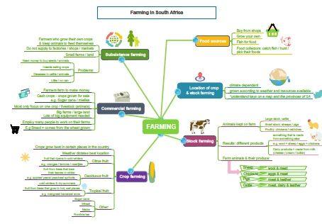 Grade 4 Geography: Farming mind map | Social Sciences: Grade 4 to