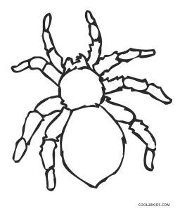 Spider Coloring Pages Spider Coloring Page Coloring Pages