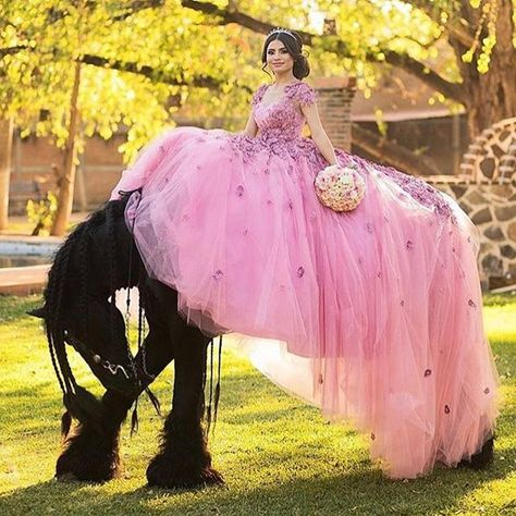 Princess on the most majestic horse! Have you girls thought about having a photoshoot with a horse?! @quincemadrina . . #sweetsixteen #party #photooftheday #fashion #beautiful #partydress #styled #boutique #mine #beauty #natural #inspiration #naturalbeaut