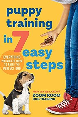 Puppy Training In 7 Easy Steps Everything You Need To Know To