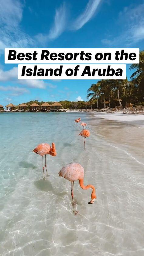 Top Resorts in Aruba | A One Way Ticket