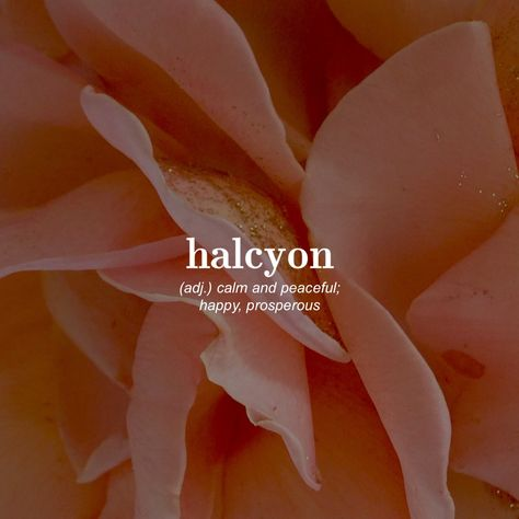 Nalcyon (adj) ..calm and peaceful; happy, prosperous
