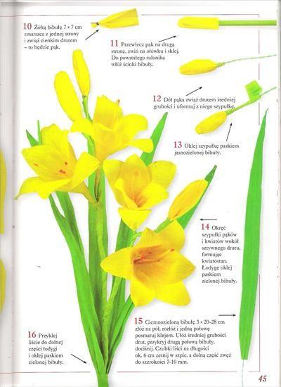 Kwiaty Z Bibuly Bibula Halszka64 Chomikuj Pl Strona 2 Fruit