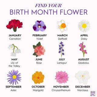 Better Homes Gardens Combo Offer Birth Flower Tattoos Birth