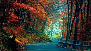 Lenovo Laptop Beautiful Wallpapers Top4um Background Hd Wallpaper Autumn Wallpaper Hd Fall Wallpaper