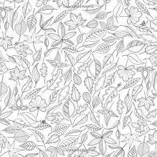 El Jardin Secreto Libro Para Colorear Buscar Con Google Libro