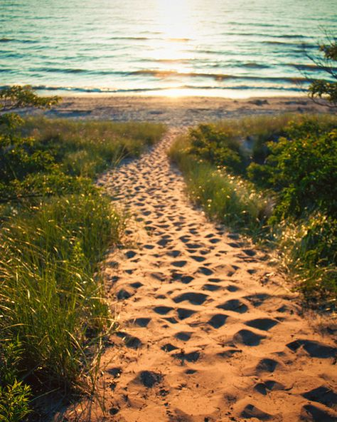 Path to Lake Michigan