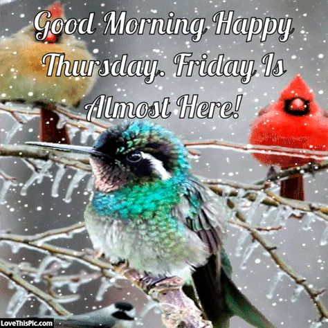 Good Morning Happy Thursday Winter Gif Quote Pictures Good Morning Interesting Happy Thursday Quotes
