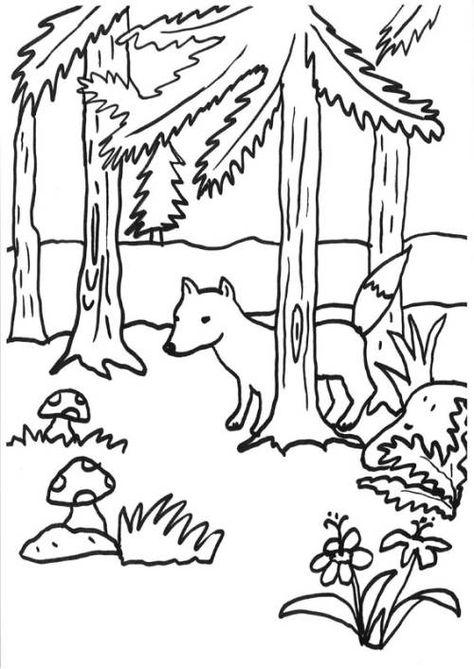 Wald Malvorlagen kostenlose malvorlage fchse fuchs im wald