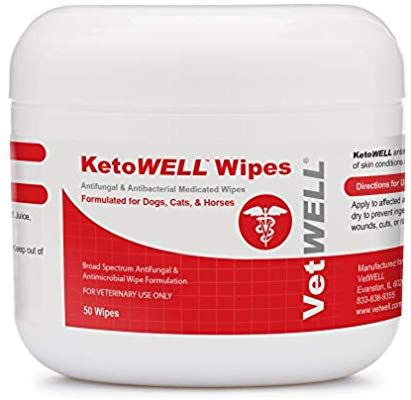 Amazon Com Ketowell Chlorhexidine Wipes With Ketoconazole For Dogs Cats Antifungal Antibacterial Antiseptic Medicated Pe With Images Antifungal Pet Wipes Antiseptic