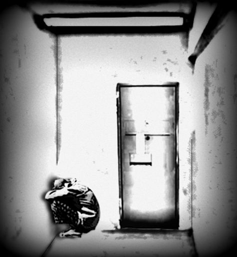 is solitary confinement torture essay The cons of solitary confinement the following presents the negative effects or disadvantages of solitary confinement: the loss of freedom being isolated in cell or in a room strips an individual of the feeling of having control over his surroundings.