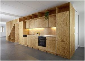 how-to-paint-plywood-kitchen-cabinets-e1446075731845-1 ...