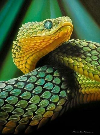 Green Snake Full Drill Round 30 X 40 Cm Includes Canvas Diamonds Tray Pen Wax Reptile Snakes Pretty Snakes Animals