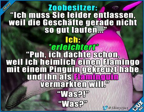 Das wird ein Verkaufsschalger! #Flaminguin #Pinguin #willhaben #lustig #lachen #Humor