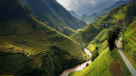 Road to Heaven,Mu cang chai,Vietnam.   Vietnam voyage