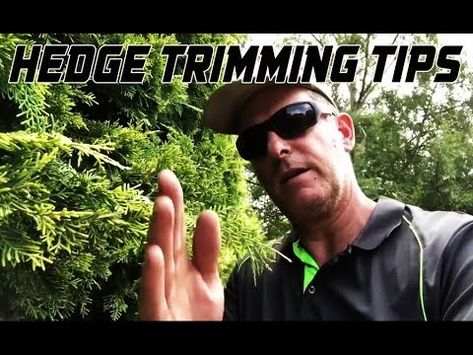 Lawn Mowing Tips Hedge Trimming Tips Hedges Youtube Design Lawn