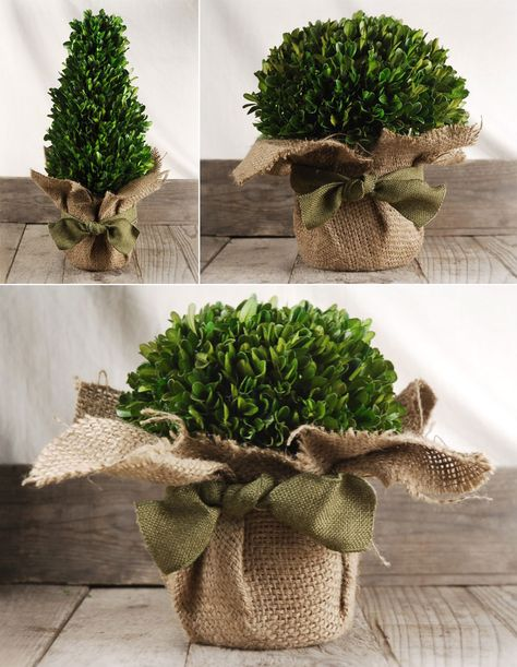 Cute ways to wrap pots with #burlap
