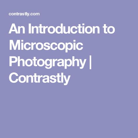 An Introduction to Microscopic Photography | Contrastly