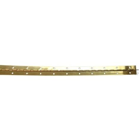 Rockford Process Control 1 1 2 Inch Continuous Piano Hinge 48 Inch Long Brass Plated Steel Cp2 3303s 48 Process Control Continuous Hinges Plating