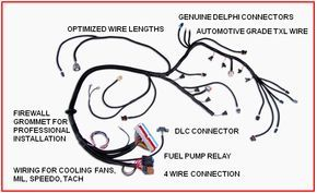 Swap Wiring Harness | Ls engine, Ls engine swap, Ls swap on boat trailer lights wiring harness, jeep cj7 headlight bucket, jeep grand cherokee engine wiring harness, jeep wrangler fog light wiring,
