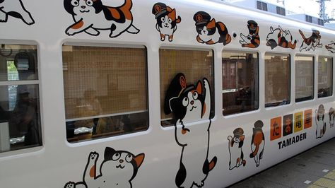 aee8a854e45513b16b1c6d5359df0cd9 - The cat who saved a Japanese rail line - Tira-Pasagad | Saksak-Sinagol