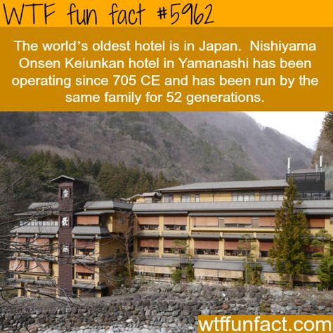 WTF fun facts is a blog for interesting facts & funniest facts. we post health, celebs/people,...