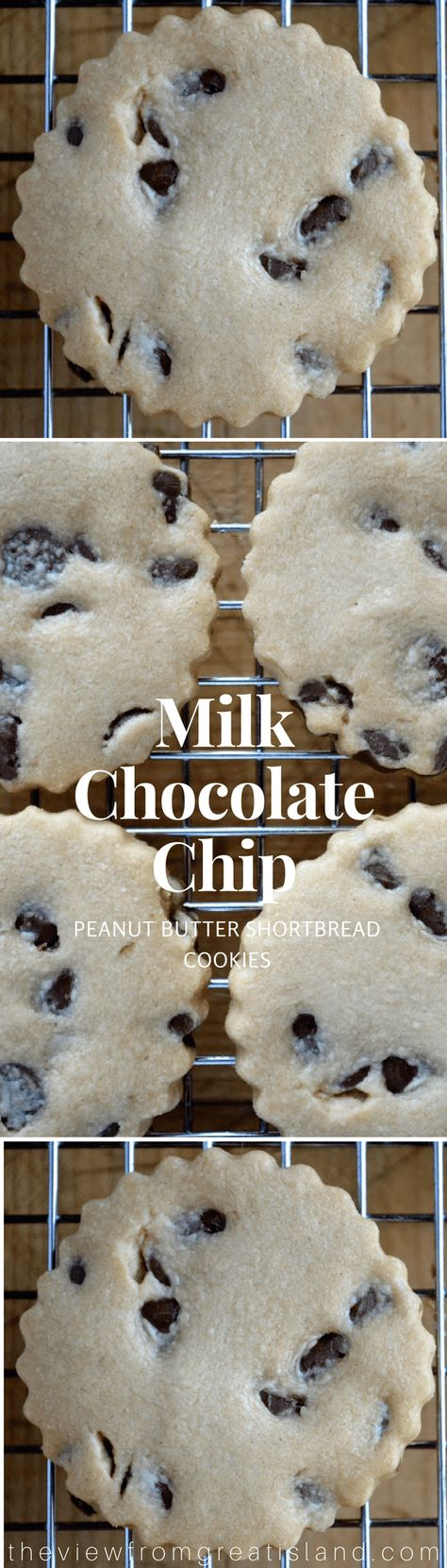 These Milk Chocolate Chip Peanut Butter Shortbread Cookies are an easy slice and bake cookie and a to-die-for combination of peanut butter, chocolate chips, and shortbread! #cookies #shortbreadcookies #chocolatechipcookies #peanutbutter cookies #holidaycookies #Christmascookies #sliceandbake #easycookies #bestchocolatechipcookies