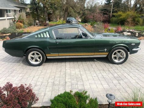1969 Ford Mustang Ford Mustang Forsale Canada