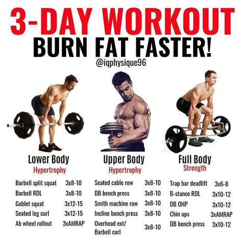 3 day a week full body workout for weight loss