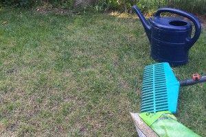 Marvelous Rasen nachs en Die besten Jahreszeiten sind Fr hjahr und fr her Herbst