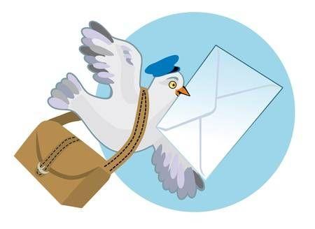 Paloma Mensajera Con Una Bolsa Y Una Carta De Un Proyecto De Ley Palomas Mensajeras Paloma Sobre De Carta