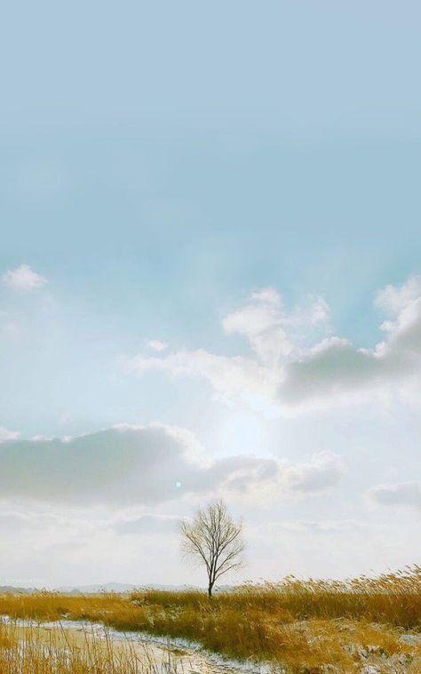 Bts Wallpaper Aesthetic Spring Day 61 Ideas Bts Wallpaper Bts Spring Day Bts Spring Day Wallpaper