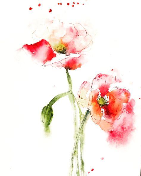 """#poppies #watercolorpaint #aguarela #looseflorals #wildflowers #poppytattoo #watercolordrawing #watercolorflower"