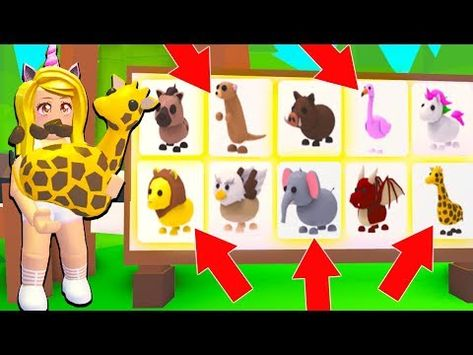 Buying All The New Safari Pets In Adopt Me Roblox Youtube Animal Room Adoption Pets