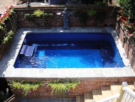 22 Endless Pools Ideas Endless Pool Swimming Pools Pool