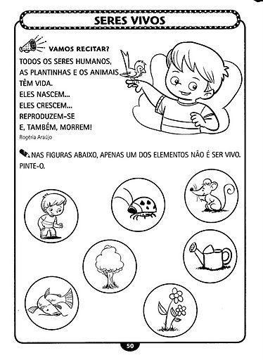 Resultado De Imagem Para Seres Vivos Educacao Infantil Atividades