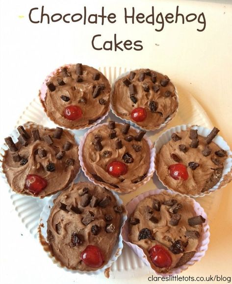 Photo of Chocolate Hedgehog Cakes | Clare's Little Tots