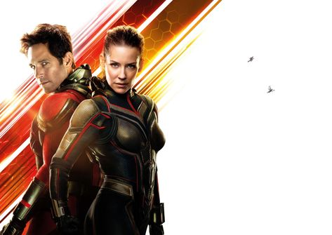 Ant-Man and the Wasp 8k Ultra HD Wallpaper | Background Image | 18620x13200 | ID:929403
