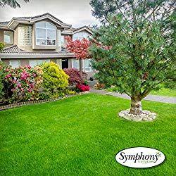 Symphony Sod Grass Turf Grass Sod Green Lawn Lawcare Garden Gardening Sod Grass Where To Buy Sod Grass