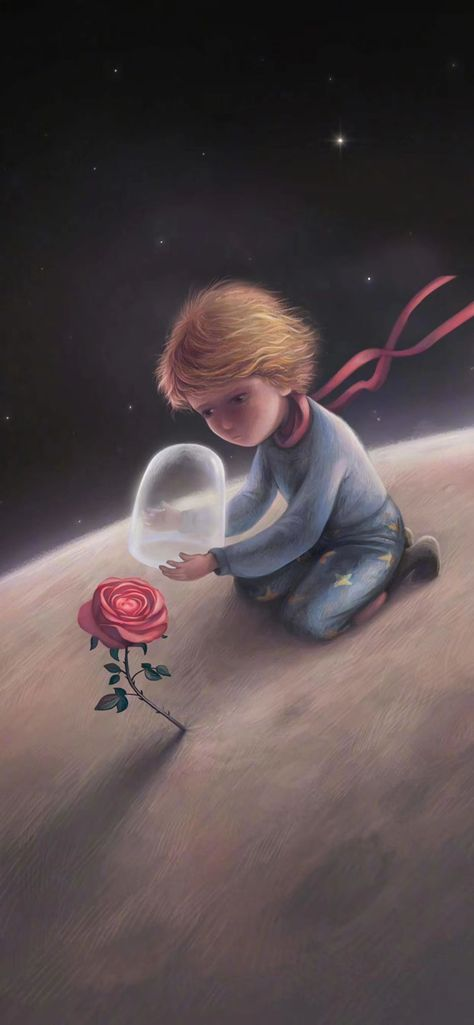 the little prince/rose/prince/cartoon/animation/disney/illustration/wallpaper